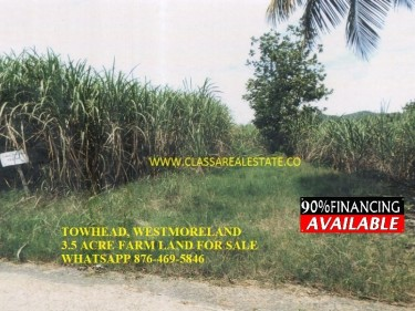 TOWNHEAD, WESTMORELAND 3.5  ACRE FARM LAND 4 SALE