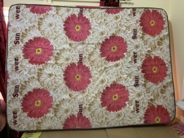 Queen Size Bed And Base (used)