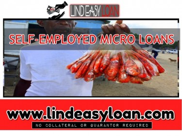 SELF-EMPLOYED MICRO LOANS
