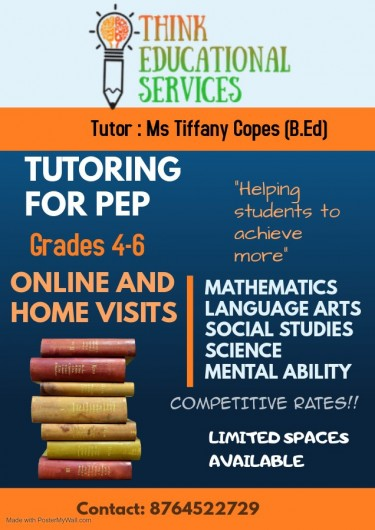 Think Educational Services