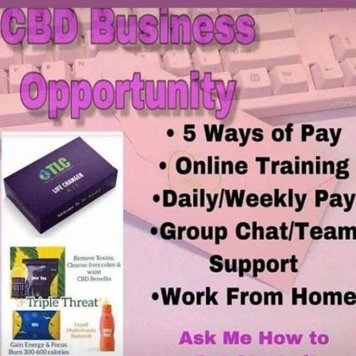 Are You Ready To Become Your Own Boss??