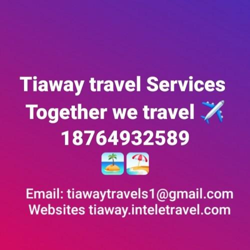 TRAVELS FLIGHT, CRUISES, HOTEL ACC. ,VISA APPLICAT