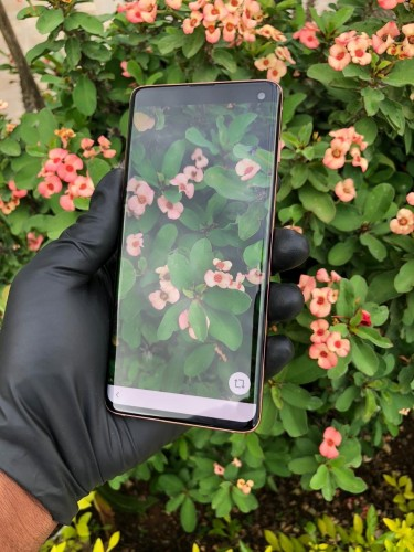 Samsung Galaxy S10 128gb Unlocked Flamingo Pink