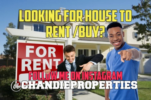 LOOKING FOR HOUSE TO RENT/BUY????
