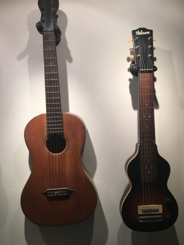 WANTED GUITARS AND FRETTED MUSICAL INSTRUMENTS