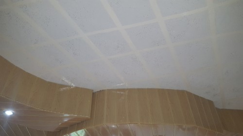 Tray Ceiling