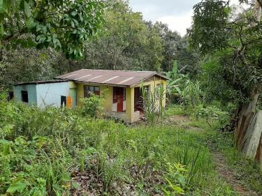 2.5 Acres Of Farm/Residential Land