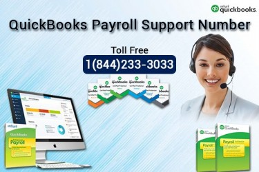 QuickBooks Payroll Support Phone Number +1(844)233
