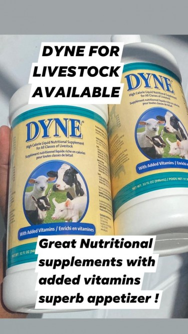 DYNE FOR LIVESTOCK FOR  SALE