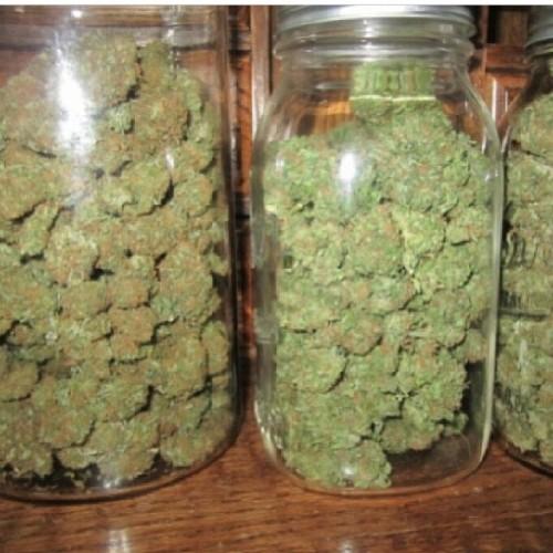 Quality Buds (weeds Etc)