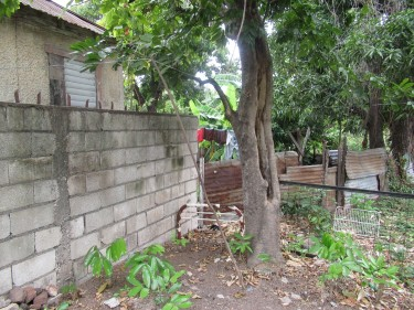 Over 17000 Sq Ft Land For Sale - (Near Police Stn)