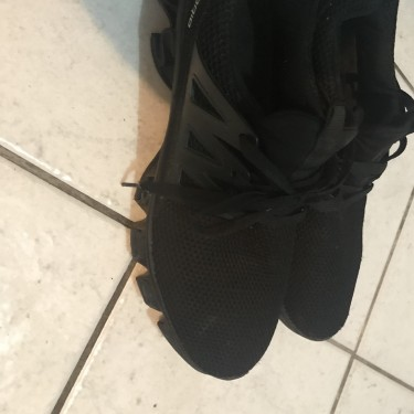 Spgorio Shoes