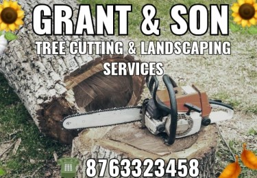 G & S TREE CUTTING SERVICES