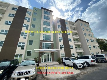 THE LOFTS..UNFURNISHED 1 BEDROOM 1 BATH FOR RENT