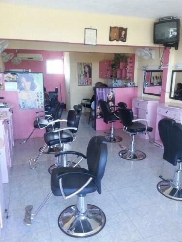 Seeking Hair Stylist I Have A Hair Salon