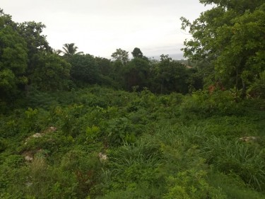 1/2 Acres Of Land