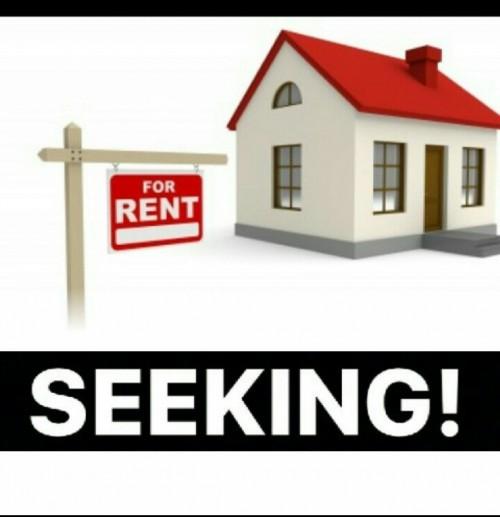 Seeking A 1 Bedroom To Rent