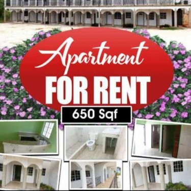 1 Bedroom Brand New Apartments For Rent
