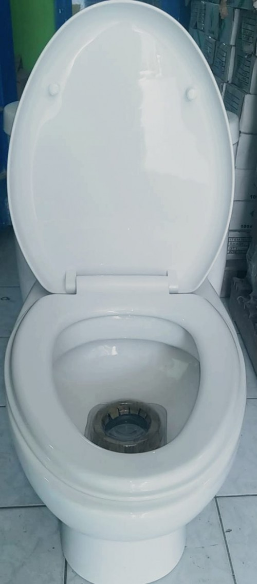 Modern Dual Flush Toilet
