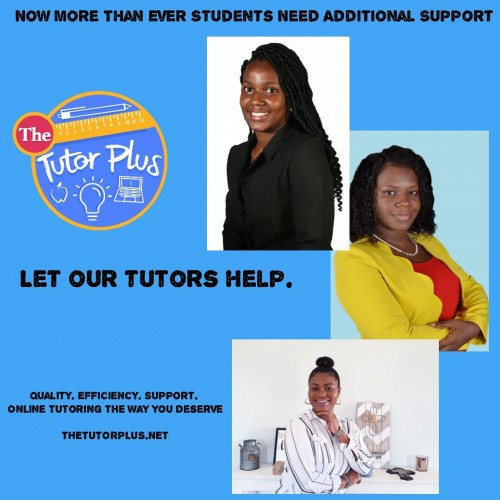 We Offer Both In-home And Online Tutoring Services