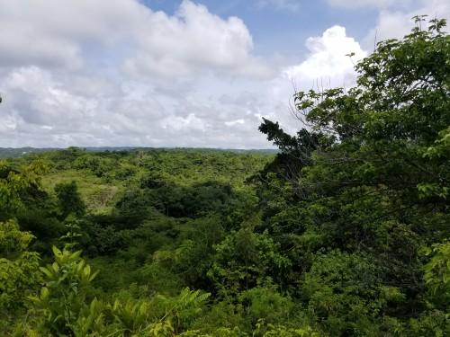 Orange Valley 700 Acres (close To Runaway Bay)