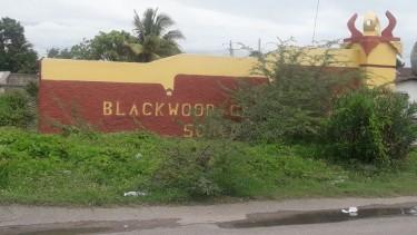 4 Bed 2 Bath Hse-Blackwood Gdns, Old Harbour Bay