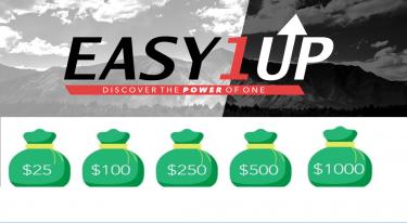 Earn $100 - $1000 Reselling My Internet Training
