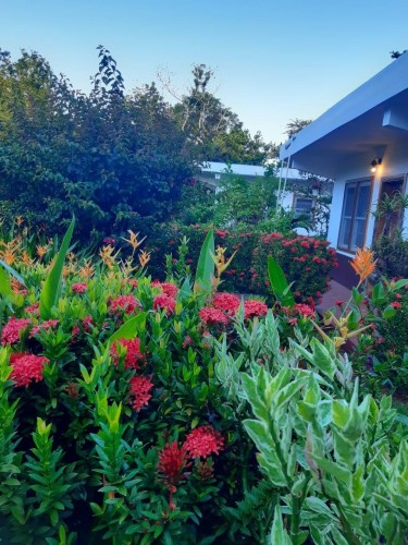 5 Self-contained Cottages- Guest House For Sale