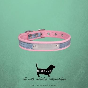 Customized Dog Collars