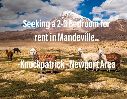 Seeking 2-3 Bedrooms In Mandeville