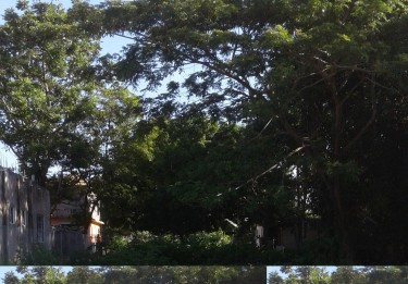 LOT FOR SALE IN WESTMORELAND