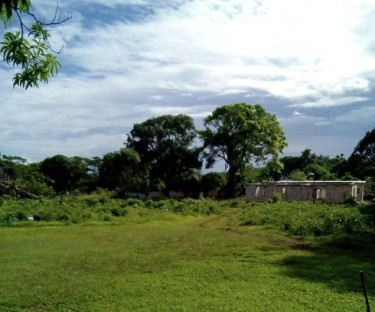 1/4 ACRE OF LAND