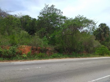 Commercial/Residential Land - Spur Tree Main Road