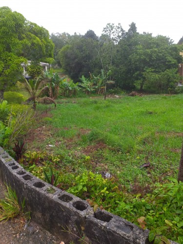 1/4 Acre Of Land - Knockpatrick Gardens