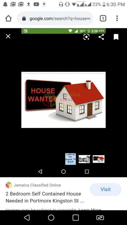 Professional Female Seeking A 1-2 Bedroom House