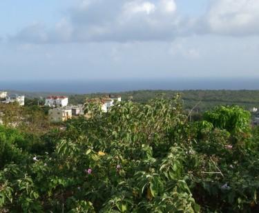 Ocean View Super Large 5 Bedrooms In Duncan Hills