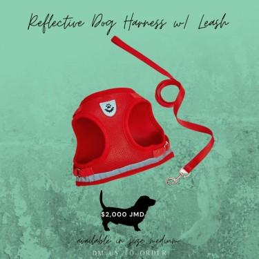 Reflective Dog Harness W/ Leash