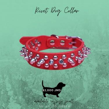 Rivet Dog Collar