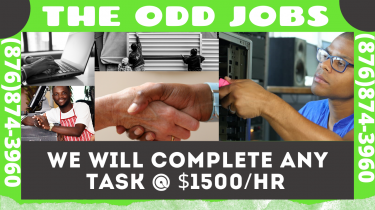 THE ODD JOBS