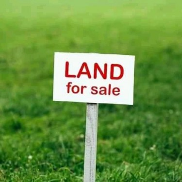 50 Acres Of Land
