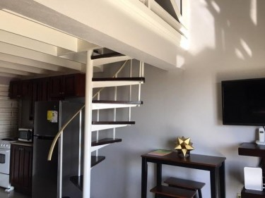 1 Bedroom APT Kensington Manor