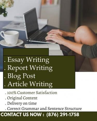 Original Essay, Report And Article Writing