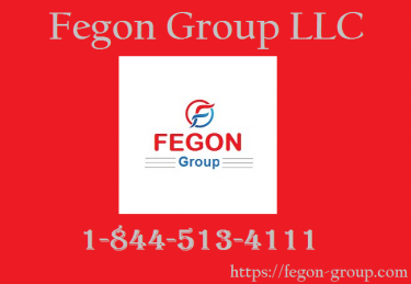 Fegon Group - 8445134111 - Internet Security