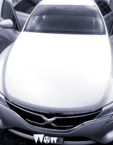 2014 Toyota Mark X
