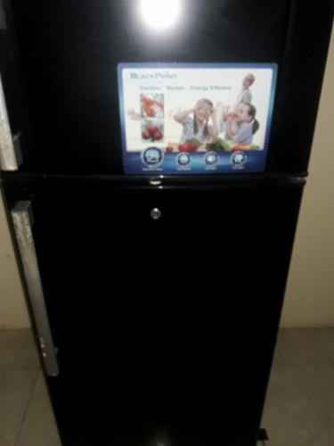 BlackPoint Elite 16 Cu Ft Refrigerator Mint