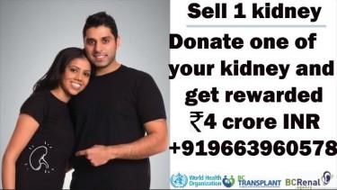 SELL KIDNEY FOR CASH 9663960578