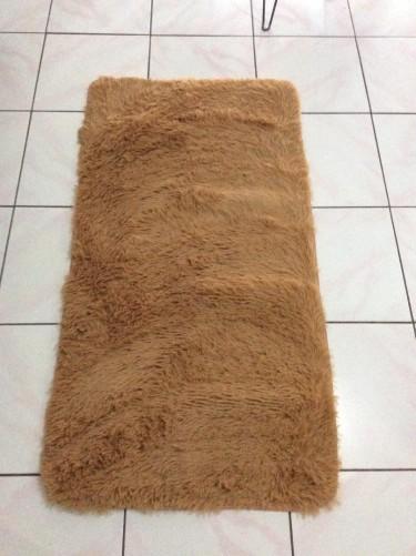 2' X 4' Plush Soft Rug