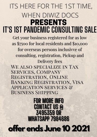 Pandemic Business Consulting Discount