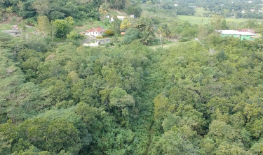 2.10 Acre Of Land;Hopewell, Stewart Town, Trelawny