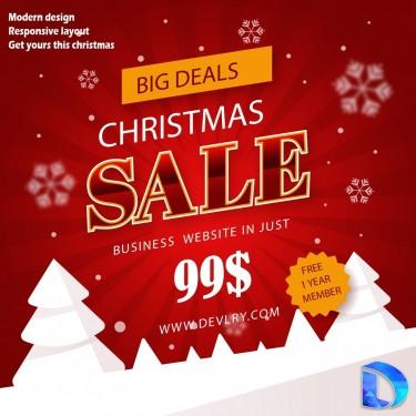 Business Website Christmass Offer